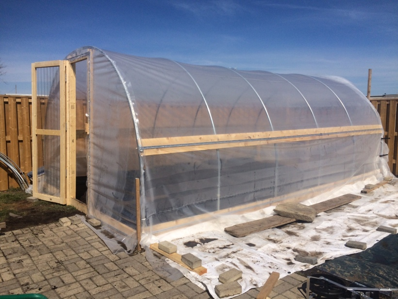 Greenhouse after construction