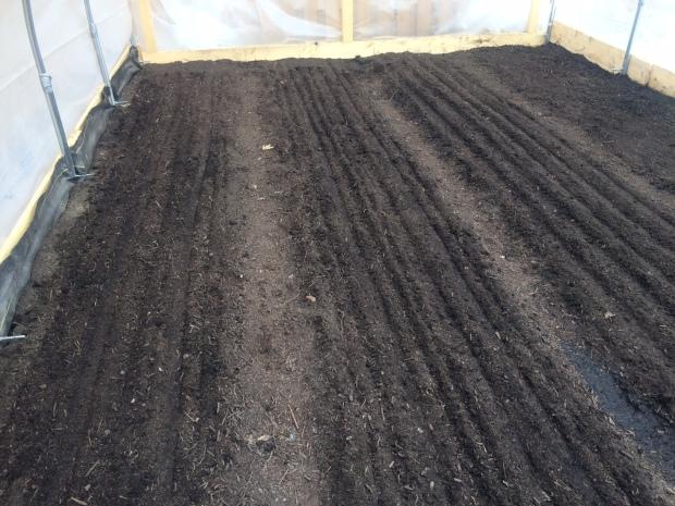 Freshly Seeded Beds